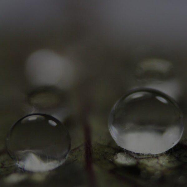 Biopreparaty do oczyszczalni
